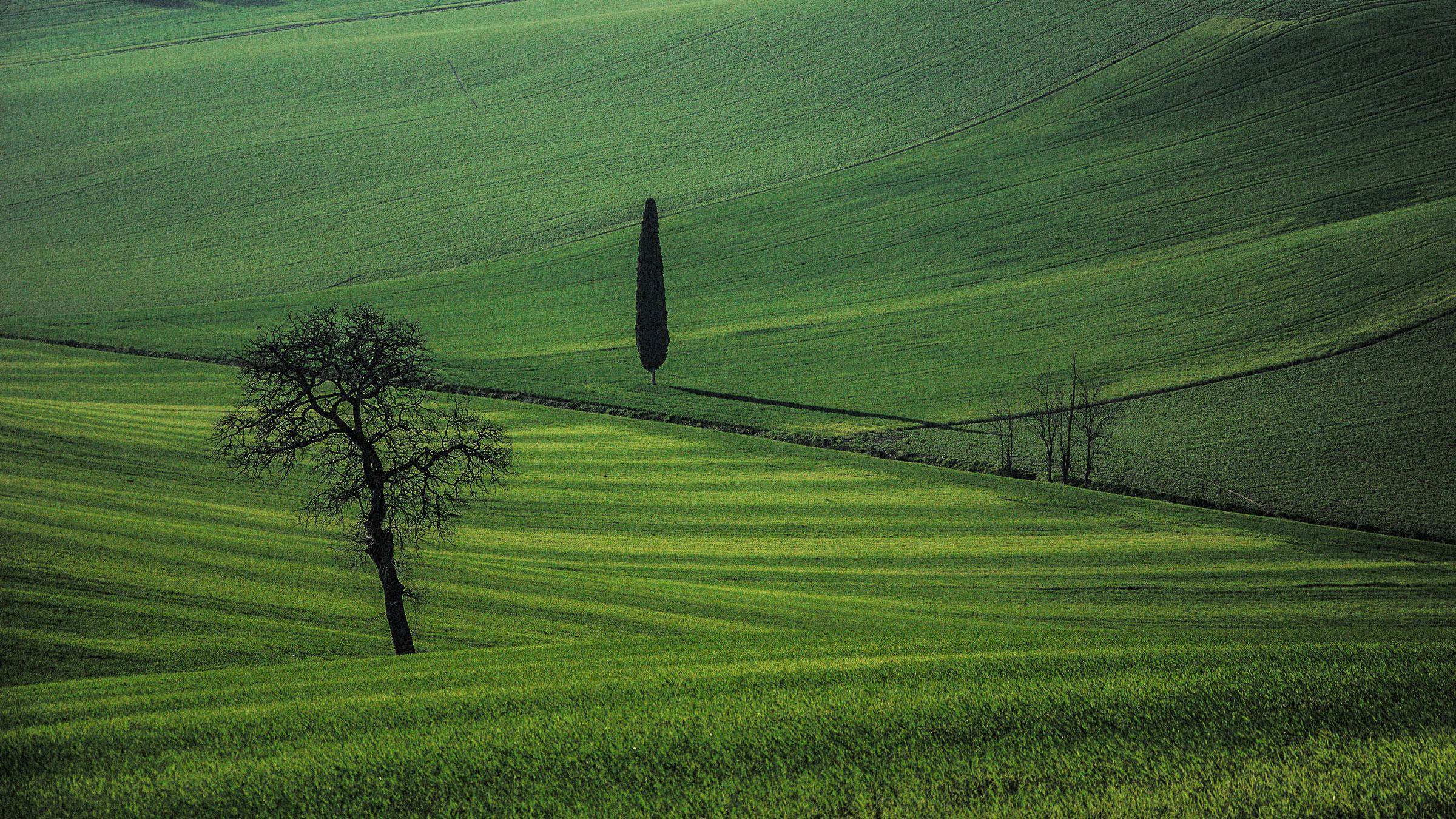 Nature and surroundings