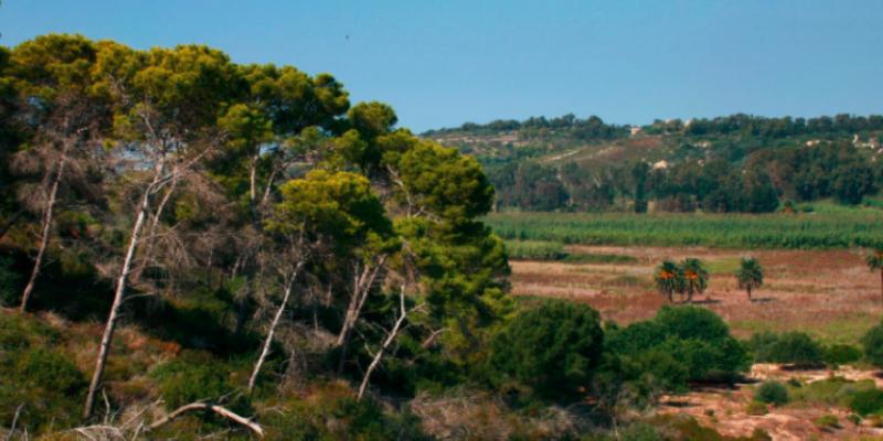 baglio-natura