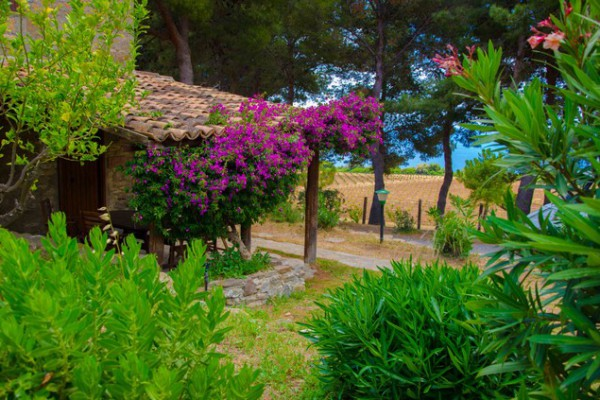 #Calabria6_4
