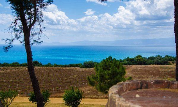#Calabria6_6