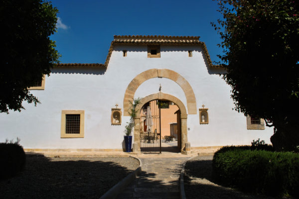 portale6